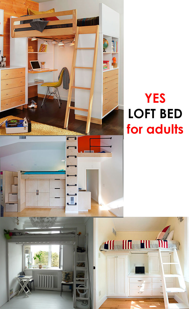 #Loft bed for young adults