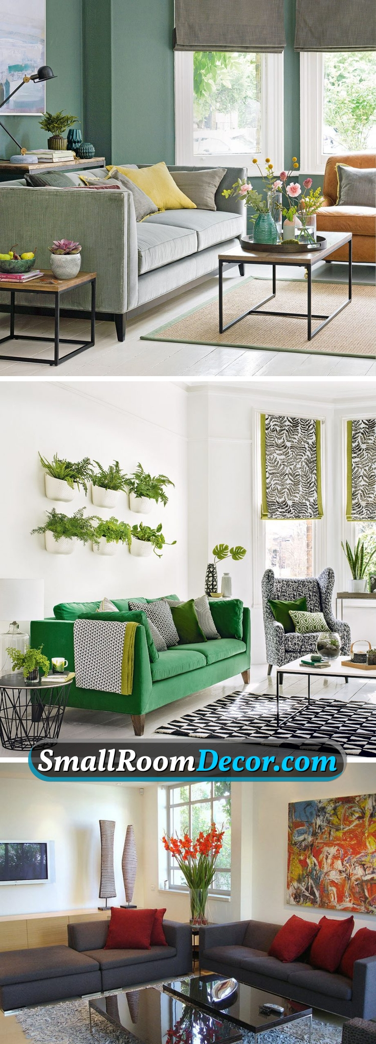 #plants in a #livingroom